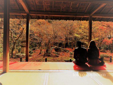 圓光寺の紅葉の額物庭園