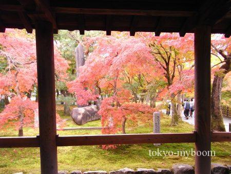 東福寺の庭