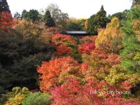 京都の東福寺