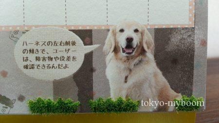 盲導犬カレンダーゴールデン