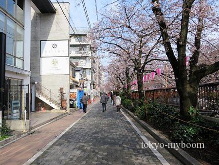 目黒川歩道