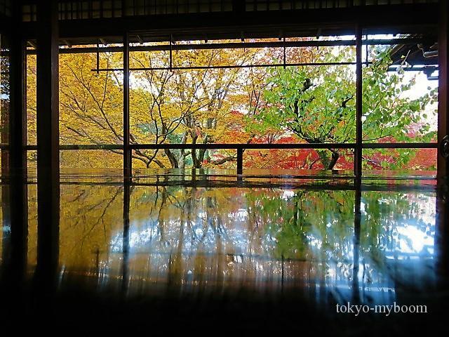 京都紅葉穴場スポット