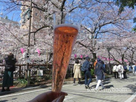 目黒川の桜時間