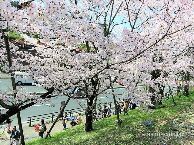 京都桜蹴上インクライン