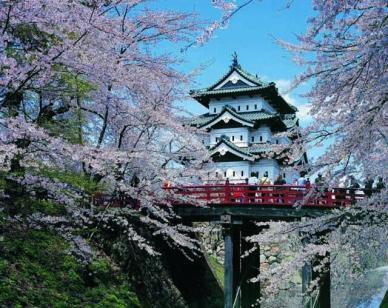 弘前桜開花予想さくらまつり