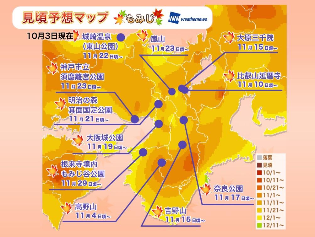 京都紅葉2019見頃時期