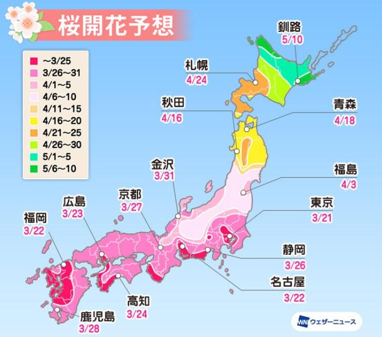 高遠城址公園桜開花予想