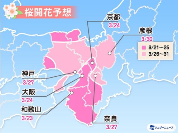 2021大阪桜開花